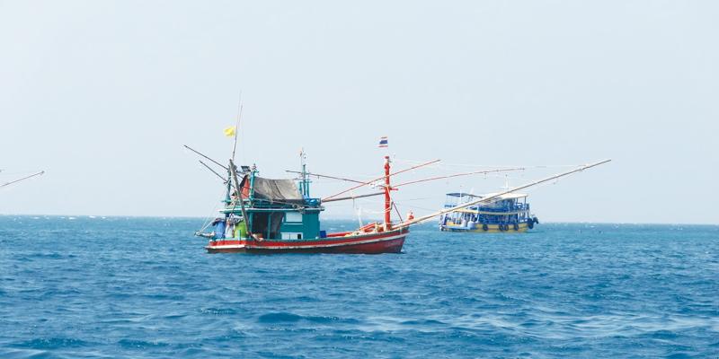 違法漁業国指定期限が延長、11月15日までに抜本対策