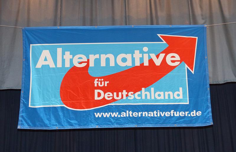 ドイツ、移民排斥政党の躍進止まらず、州議選の得票率21%で2位に
