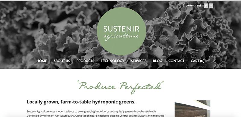 シンガポール、ハイテク農業で葉物野菜の自給率をアップ