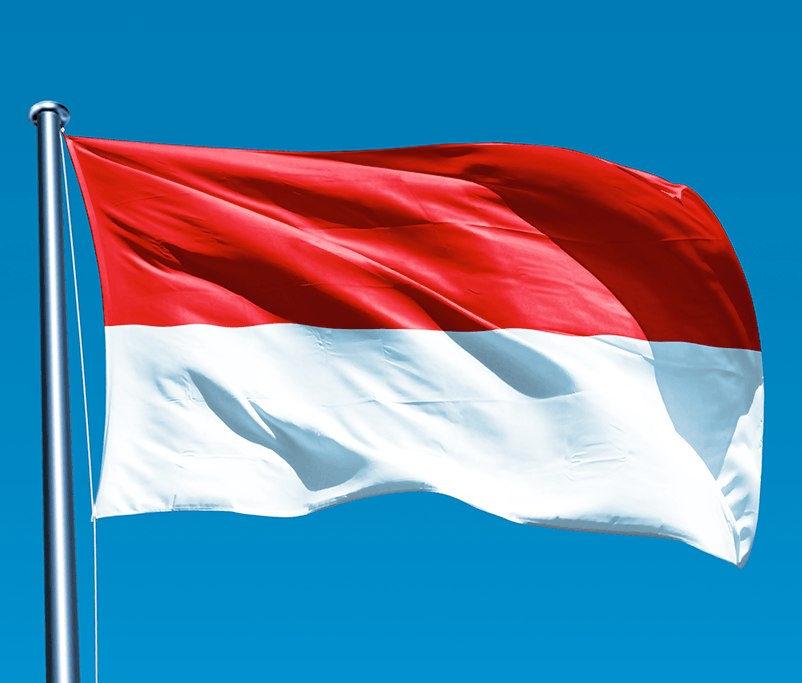 インドネシア政府、国内のインフラ整備のため、海外からの投資を誘致