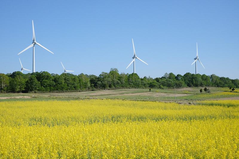 再生エネルギー拡大に外資や民間企業が3兆元投資、蔡英文総統