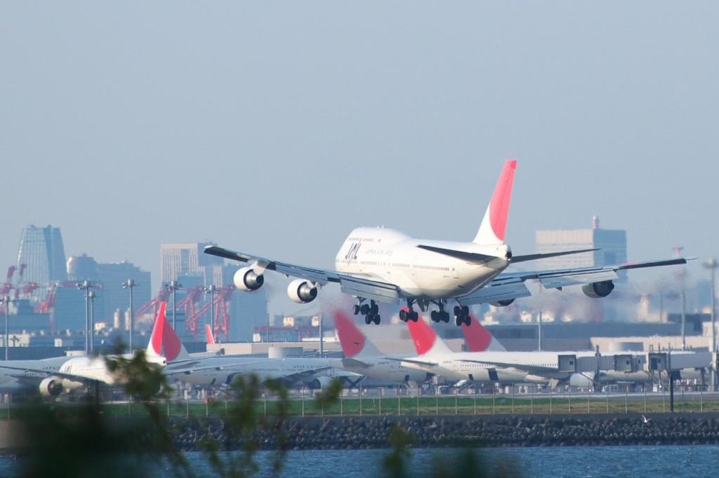 日本:JAL、客室乗務員が新型コロナウイルスに感染
