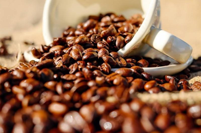 ベトナムのコーヒーフェア開催へ