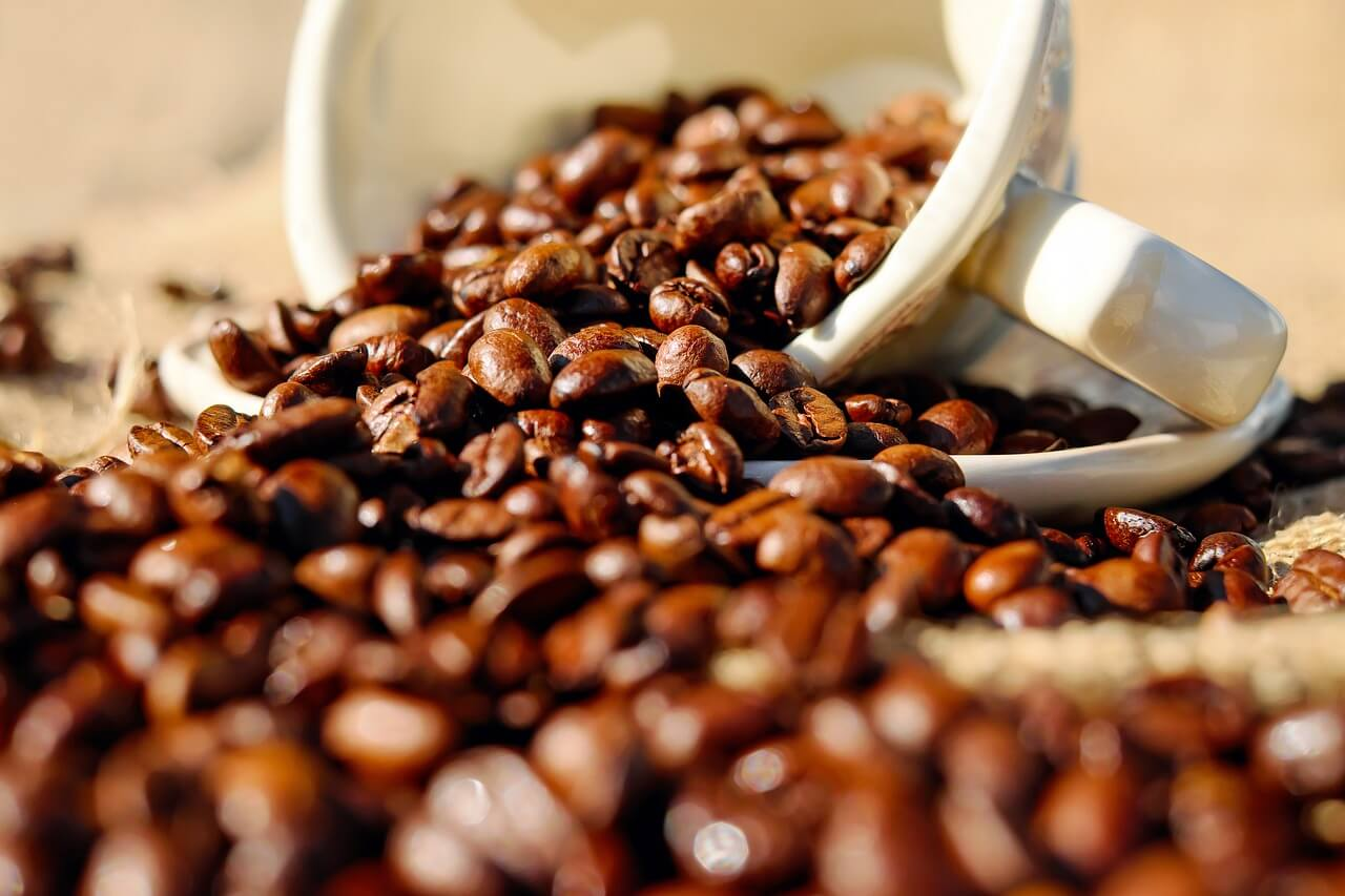 コーヒー大国・ベトナム、干ばつ被害をうけても昨年と同じ生産量をキープ
