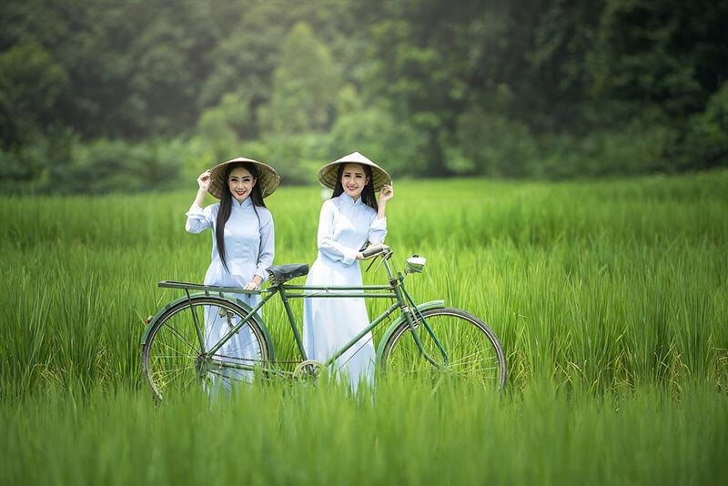 ベトナム政府、米輸出の収益増加を狙う