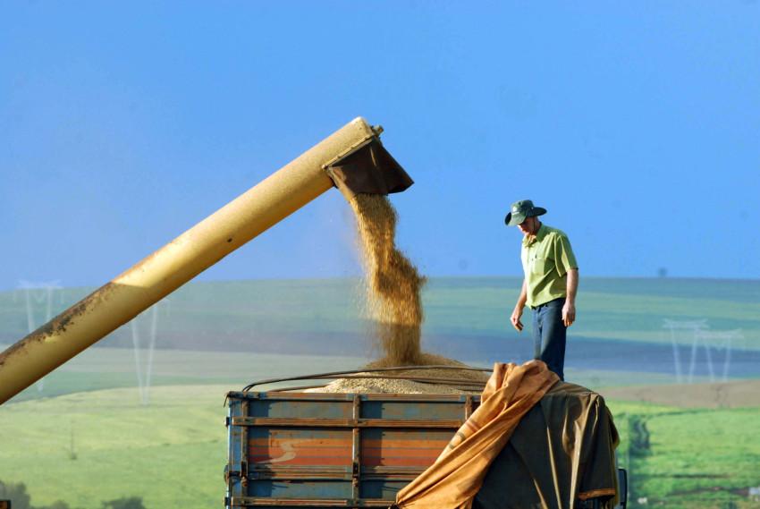 ブラジルの農作物収穫支援予算は6兆6500億円