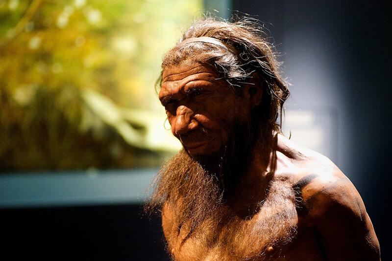 オーストラリア大陸の人類定住は65,000年前