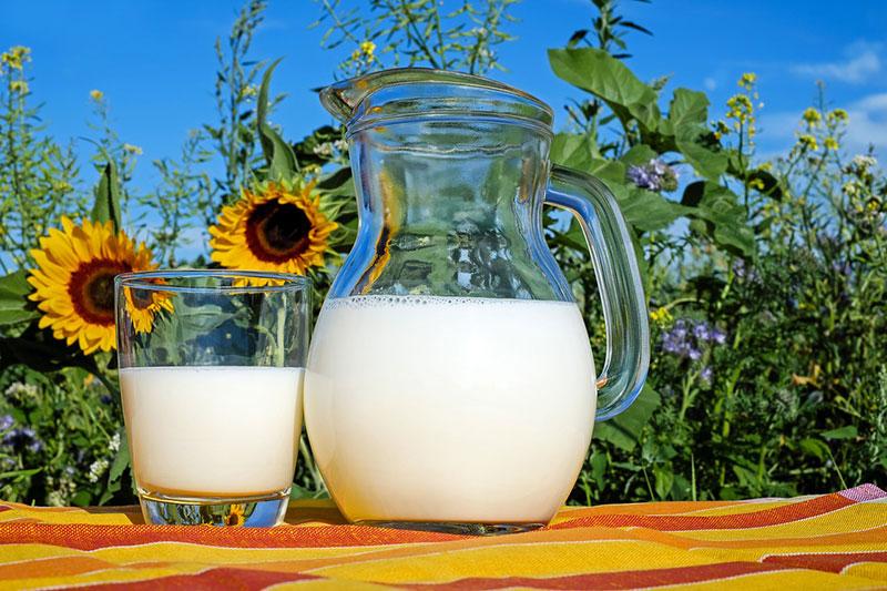 アメリカ・カナダのNAFTA再交渉 カナダの「M、I、L、K(牛乳)」が争点