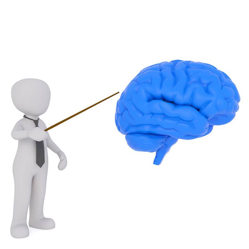 イギリス:英の研究チーム、新型コロナで脳損傷が起きる可能性指摘
