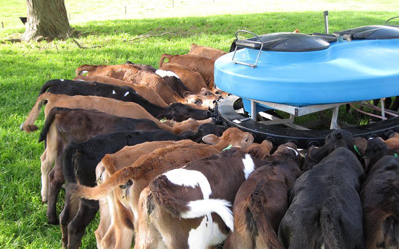ニュージーランドの乾燥乳製品工場に日本の貿易商社が3,200億ドルを投資