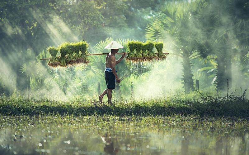日本投資家の展望が明るいカンボジア 投資金額も 1年でおよそ2倍に