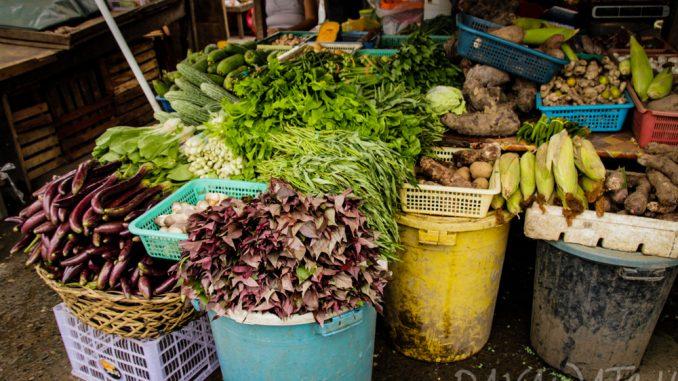 フィリピン農林省が野菜園芸を促進 野菜を無料配布で栄養失調を防止