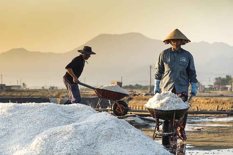中国政府、ITで農村部の発展を加速、農業IoTの大規模拠点整備計画も