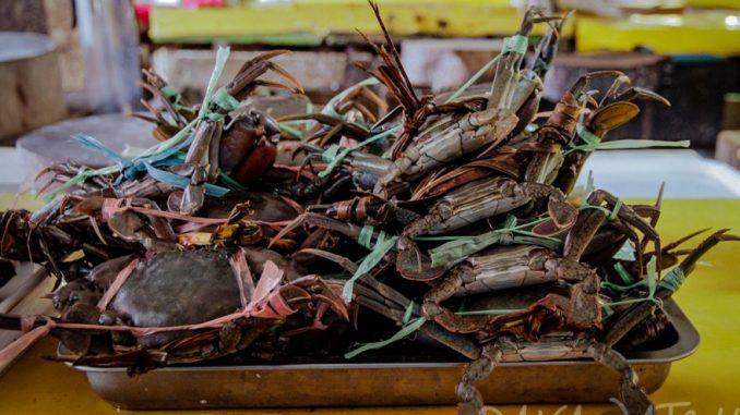 ダバオ地方の農産物および海産物に対する「希望小売価格」の実施が命じられる