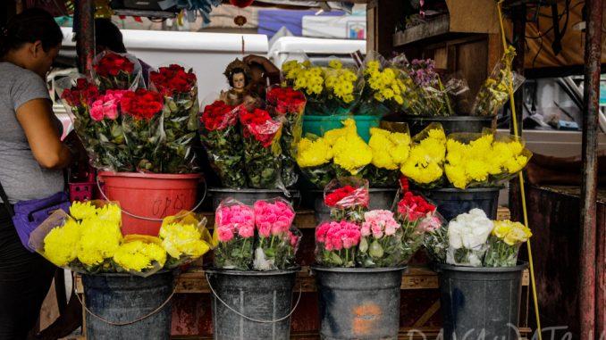 フィリピン・ダバオの花き産業の売上が上昇 カダヤワン祭が背景