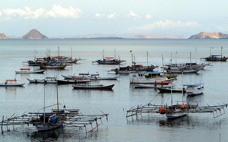 インドネシアのルマンの夜は更けて 竹筒ご飯づくりに密着 ジャカルタ唯一の工場