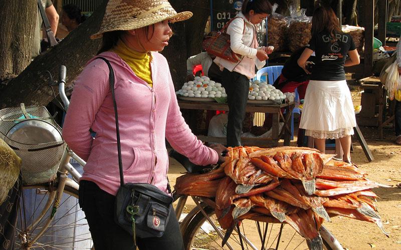 カンボジアの対日貿易が急増  日系企業のシハヌークビル港SEZ進出にも期待