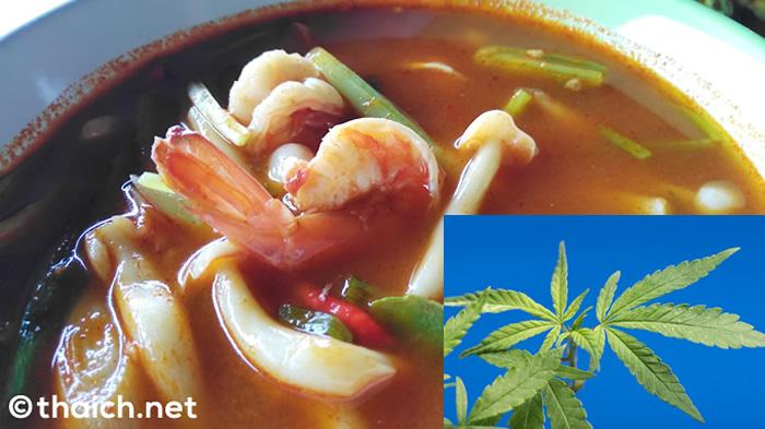 タイで大麻入りトムヤムクン食した男が逮捕 無許可の栽培・使用は依然禁止