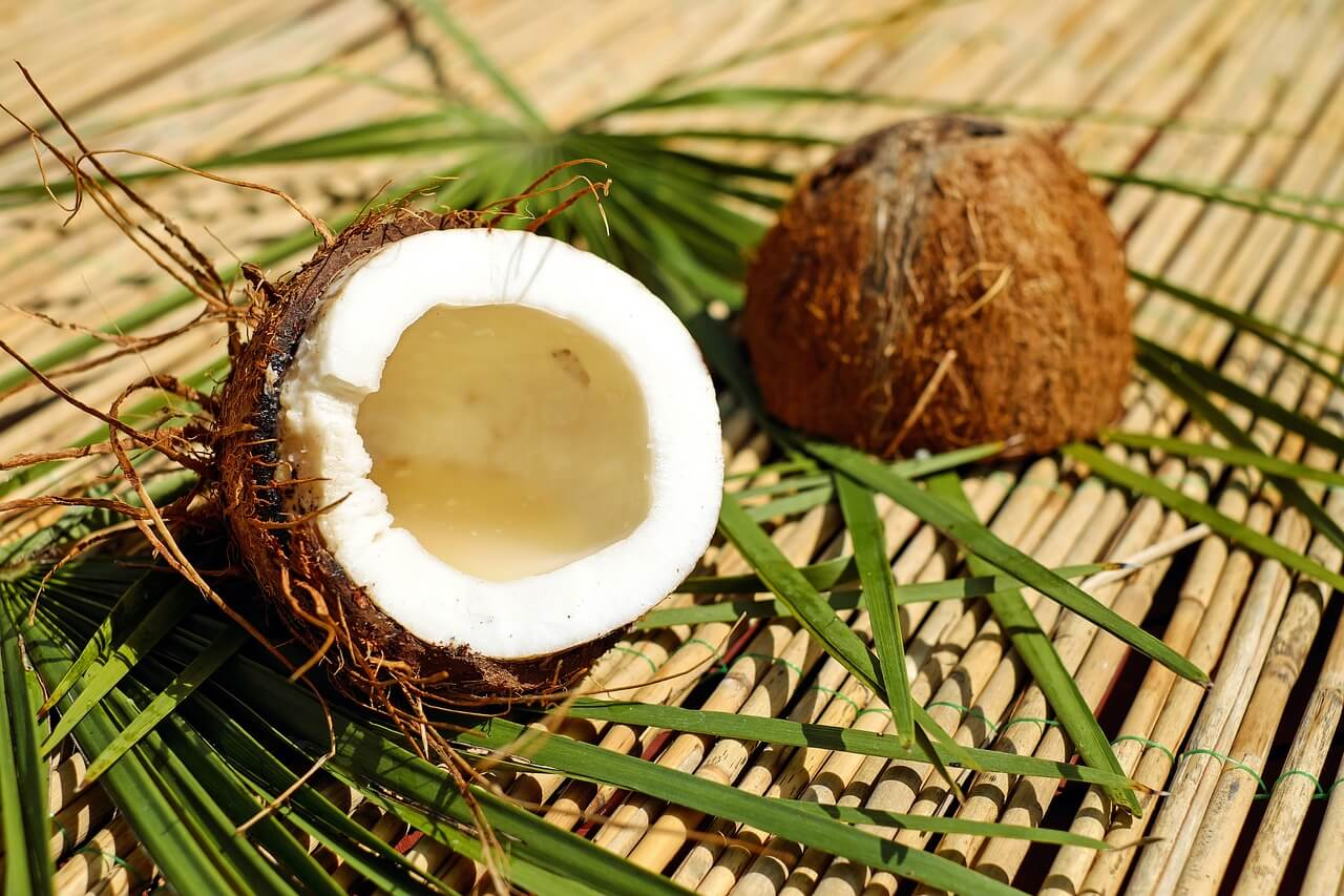 ココナッツの世界的需要増加、ミンダナオで輸出解禁が訴えられる